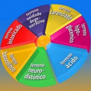 Inmaculada Moliné - Asesora de Salud Natural y Alimentación Saludable en Zaragoza - Nutrición Celular Activa