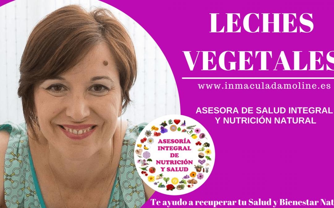 Leches Vegetales y sus propiedades (Programa Aragón en Abierto)