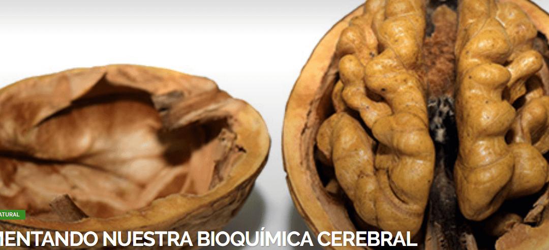 ALIMENTANDO NUESTRA BIOQUÍMICA CEREBRAL